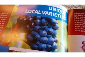 Er zijn 44 inheemse wijndruiven in Bulgarije ...